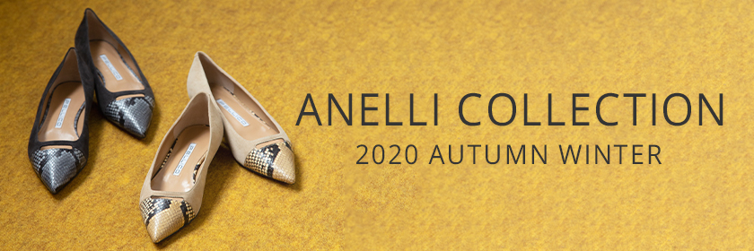 ANELLI_FEATURE